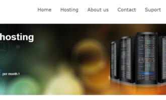 『优惠』Hostsolutions – 所有存储型VPS 7折优惠/无视DMCA/1TB硬盘 月付仅需4欧元/限量预售