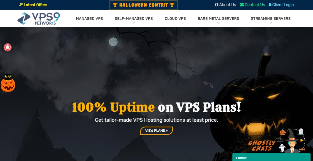 Make Your Halloween More Spooky With VPS9 Haunting Halloween Offers 资讯 第1张