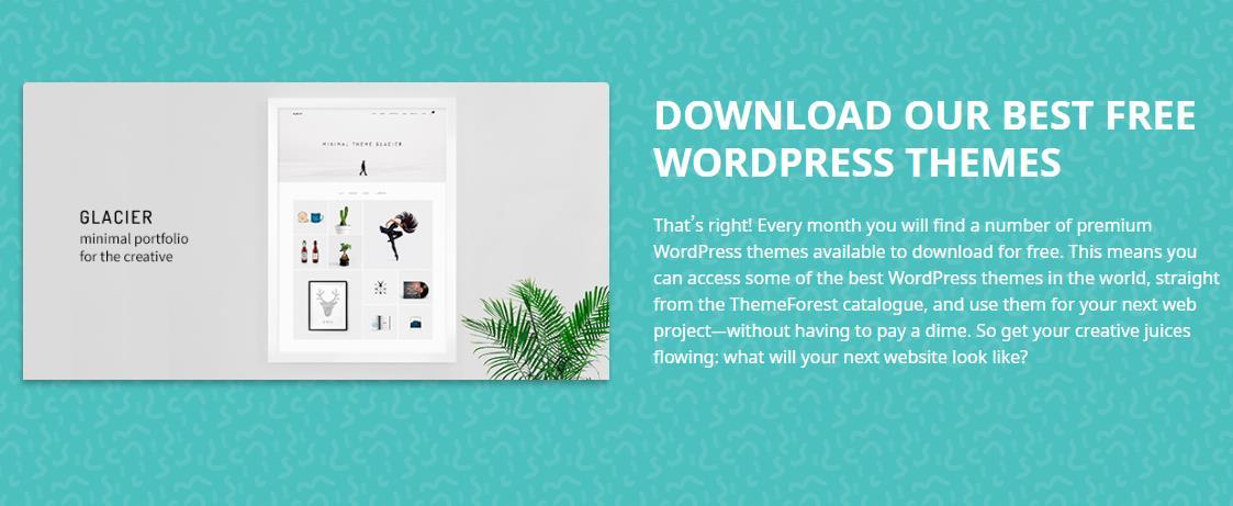 『主题』Themeforest – 2月限免WordPress主题下载/总价值147美元 做站分享 第1张