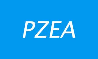 「优惠」PZEA – 全场VPS八折优惠 2核 1G内存 40G硬盘 1000G流量 香港 新加坡 日本 直连线路 月付11美元起