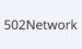 #优惠#502Network –  售卖(出租)ASN, IPv6, IPv4, 可自选 RIPE 或 APNIC